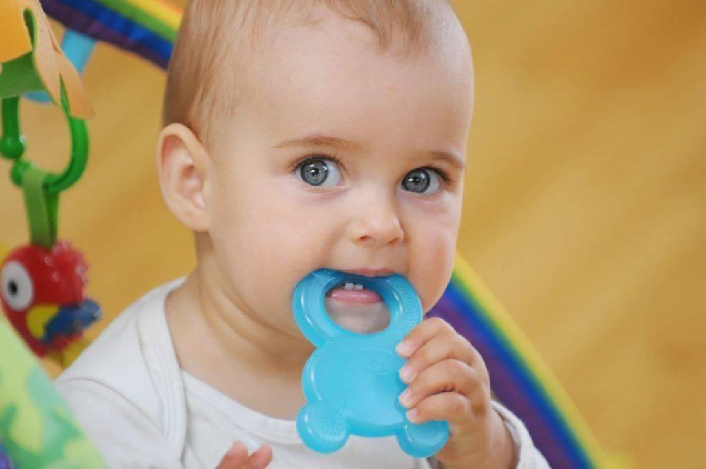 Прорезыватель для зубов (41 фото): какой лучше выбрать, силиконовые игрушки для прорезывания зубов, chicco, dr brown, pigeon
